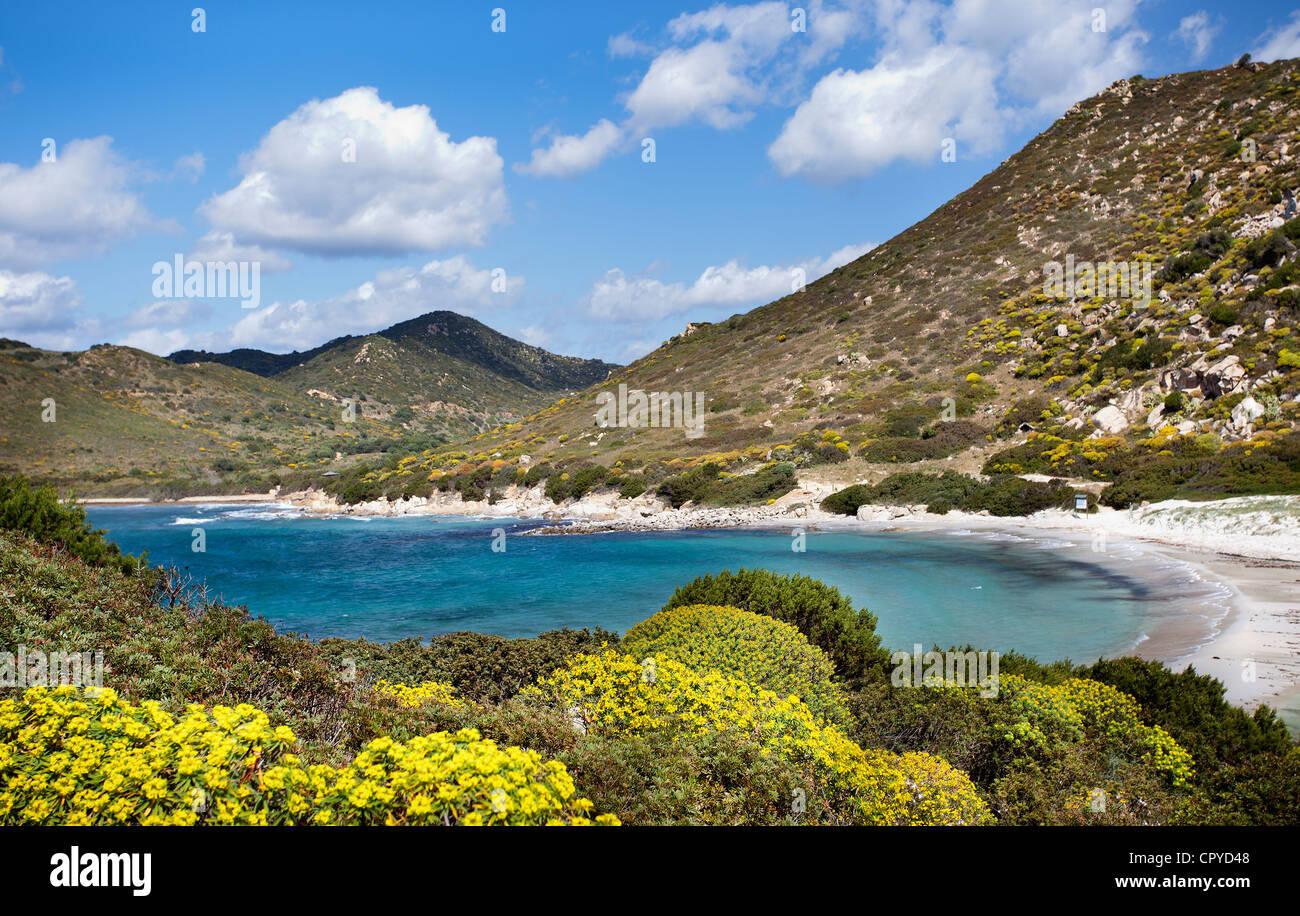 Punta Molentis beach (Sardinia,Italy) - Stock Image