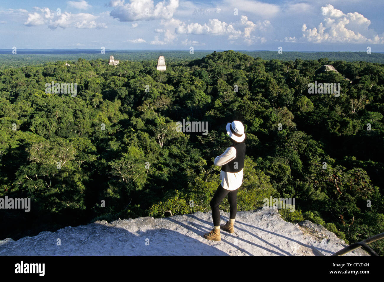 Guatemala, Peten Department, Tikal National Park, site UNESCO World Heritage, more than 4000 structures and maya - Stock Image