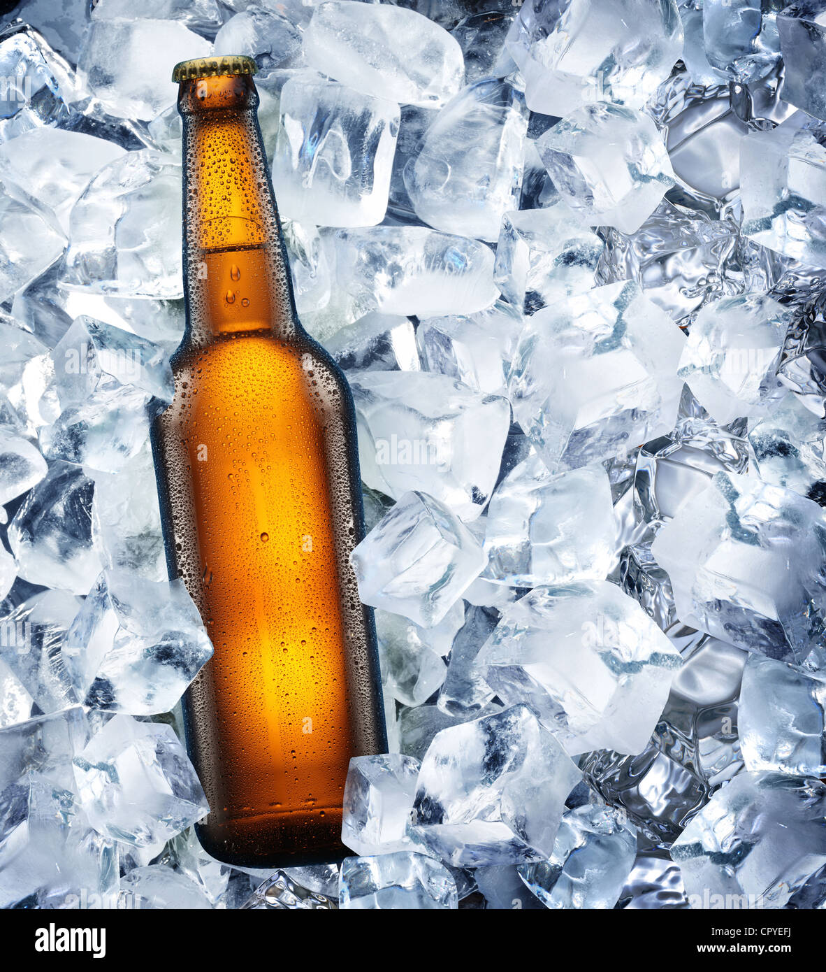 Bottle of beer is in ice - Stock Image