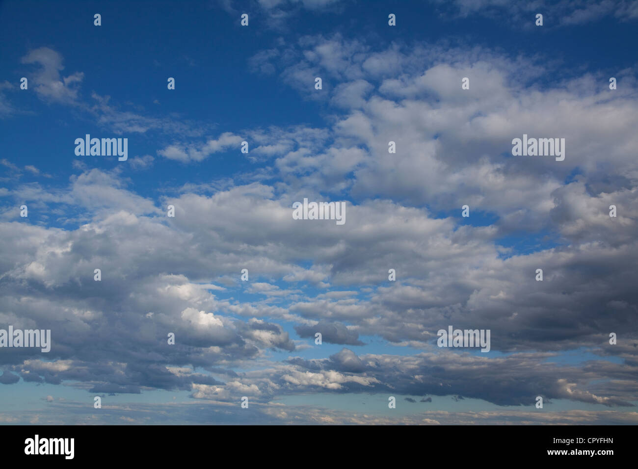 Evening fractured cumulus clouds E USA - Stock Image