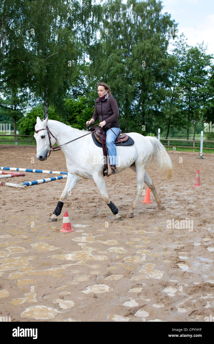 Young woman (35 years) riding on a grey horse on a muddy drill ground - Stock Image
