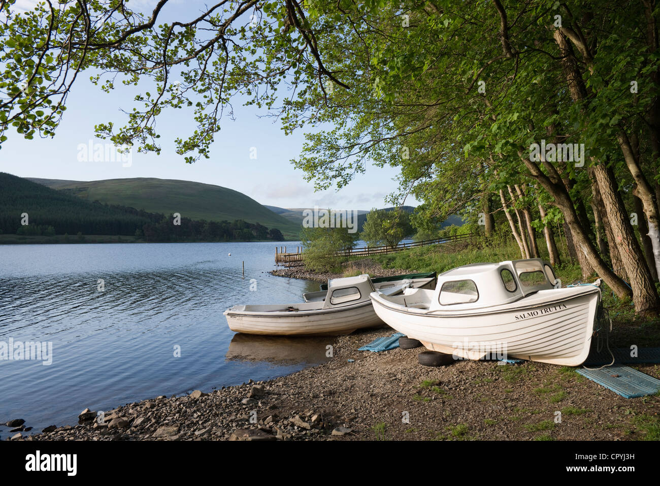 St Mary's Loch, Scottish Borders -4 - Stock Image