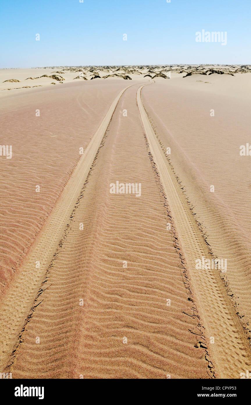 Tire tracks in the sand,  National Park, part of the Namibian Skeleton Coast National Park, Skeleton Coast, Namib - Stock Image