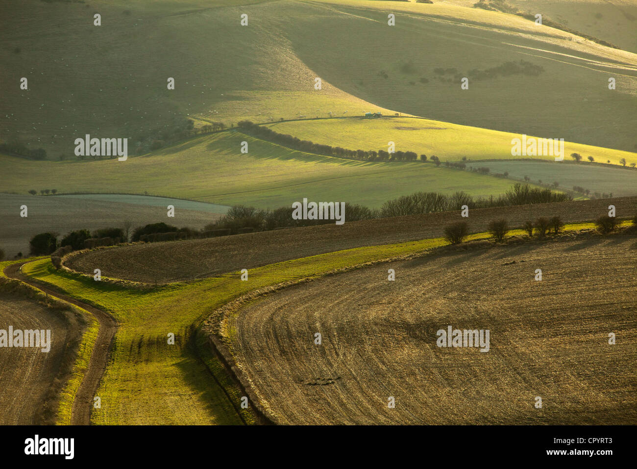 Winter afternoon on the South Downs, East Sussex, England. - Stock Image