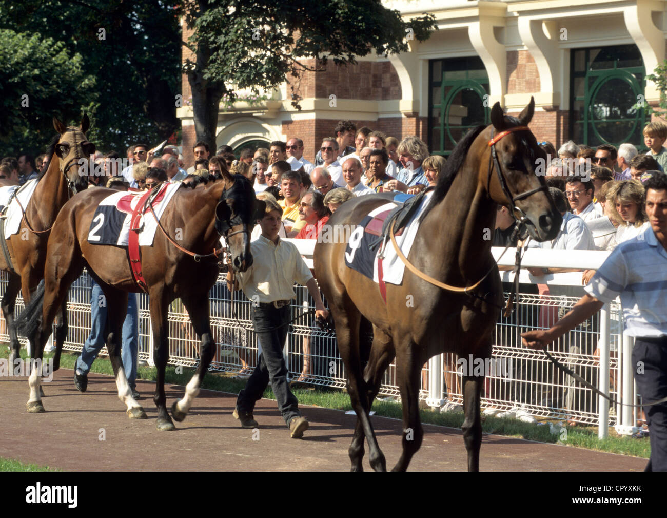 France, Calvados, Deauville, races - Stock Image