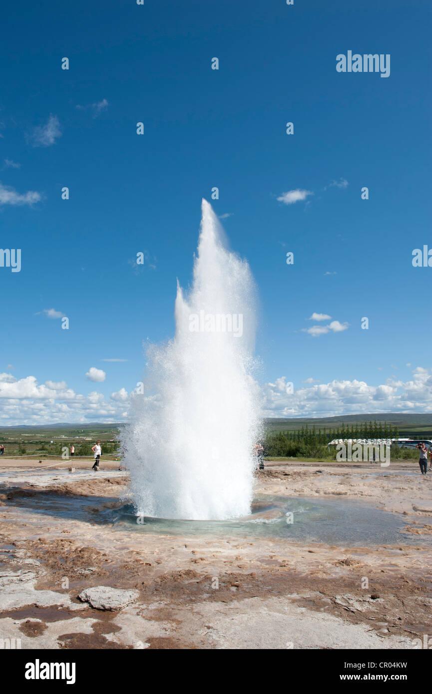 Strokkur geyser erupting, hot spring, Haukadalur, Golden Circle, Iceland, Scandinavia, Northern Europe, Europe - Stock Image