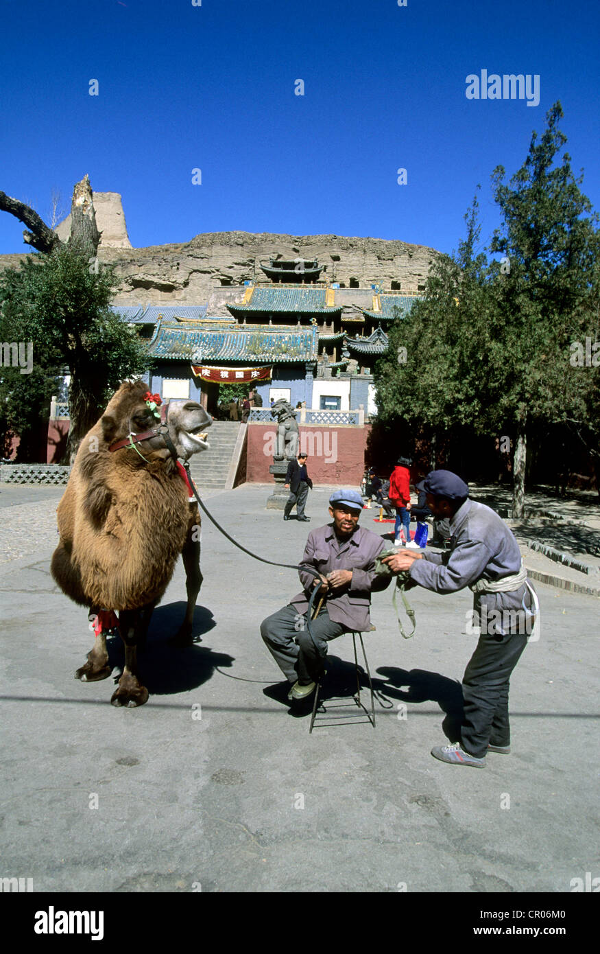 China Shanxi Province Datong Yungang Grottoes listed as World Heritage of UNESCO camel driver at entrance of grottoes - Stock Image