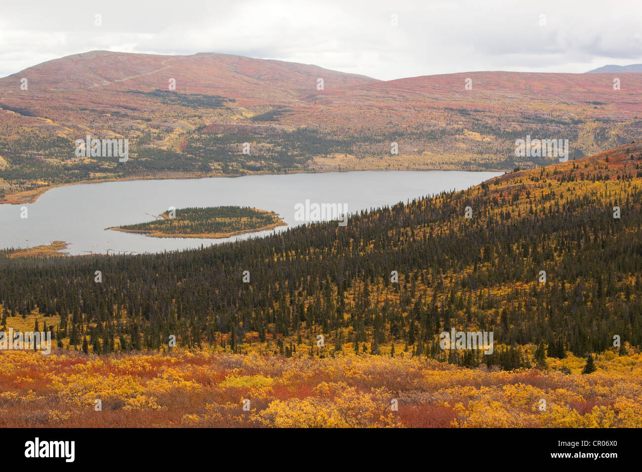 View, panorama over Fish Lake and surrounding sub-alpine tundra, Indian summer, leaves in fall colours, autumn, - Stock Image