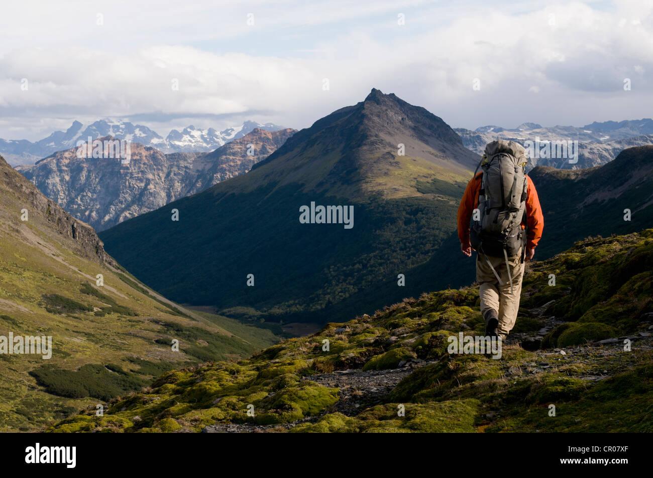Hiker walking in grassy hills - Stock Image