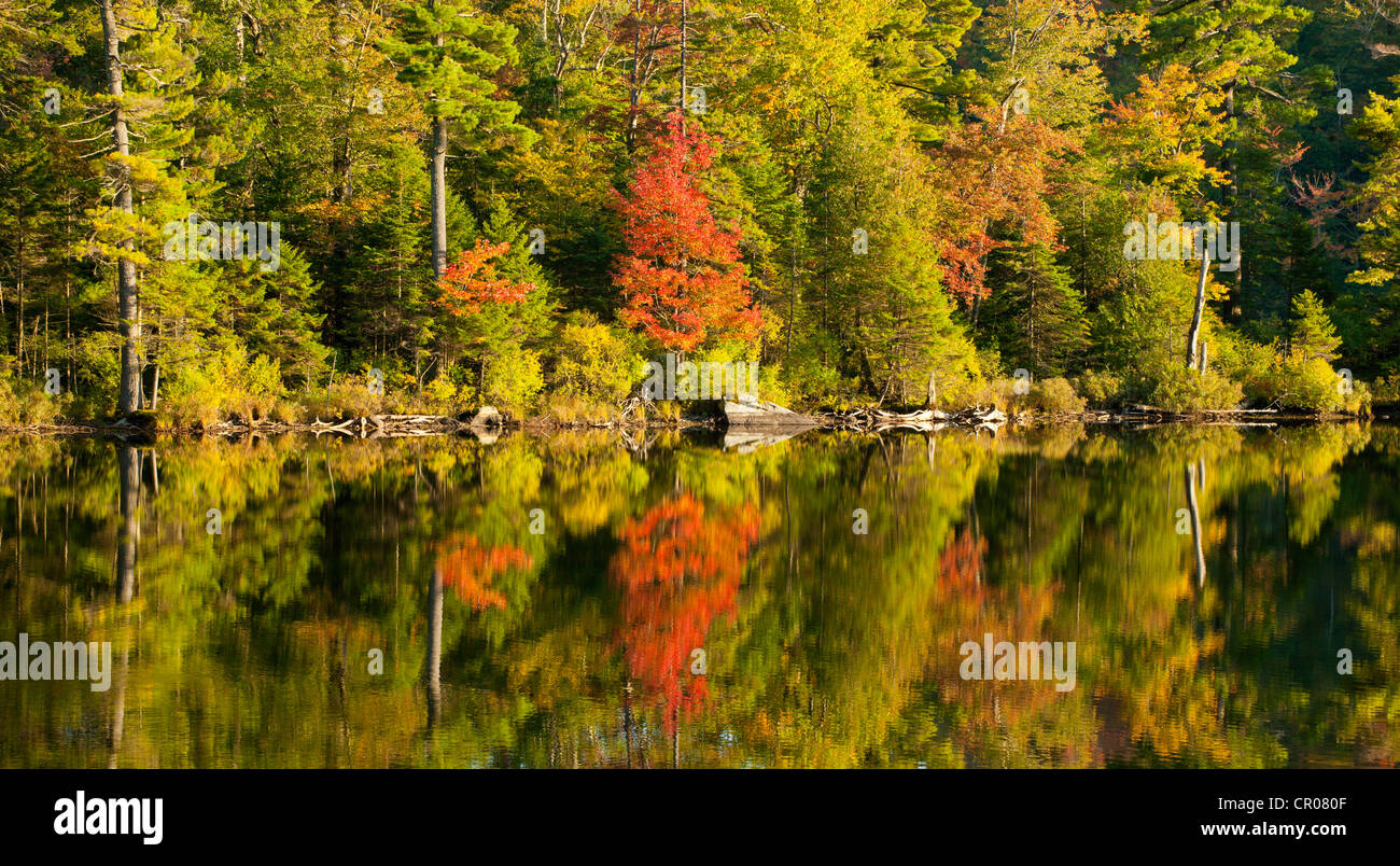 Baker pond in autumn, West Bolton, Quebec, Canada - Stock Image