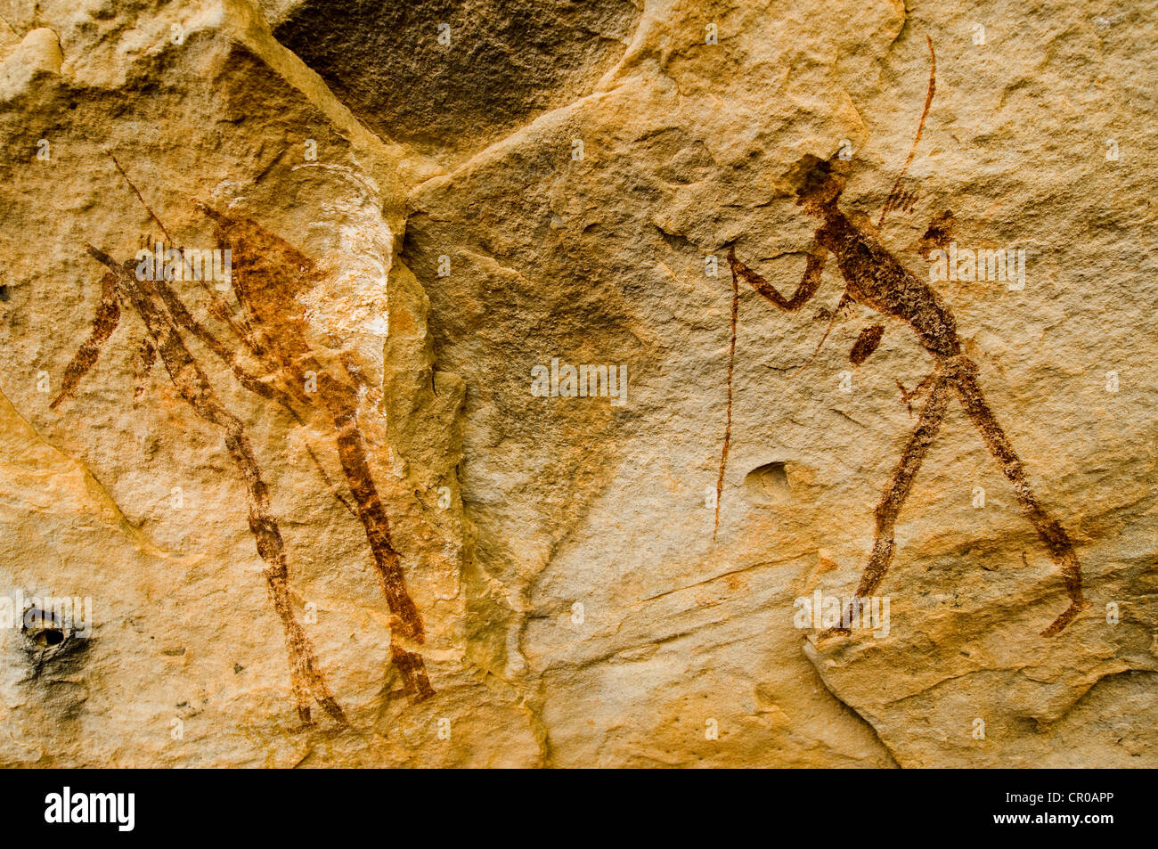 Rock painting of the San, Bushmen, Ladybrand, Free State, South Africa, Africa - Stock Image