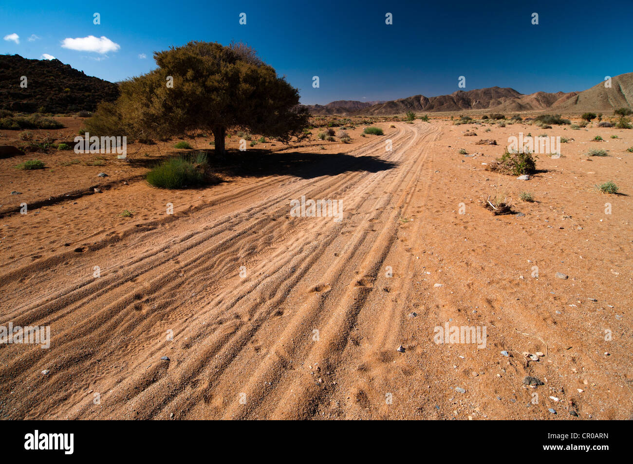 Sandy track passing through Richtersveld National Park, Northern Cape, South Africa, Africa - Stock Image