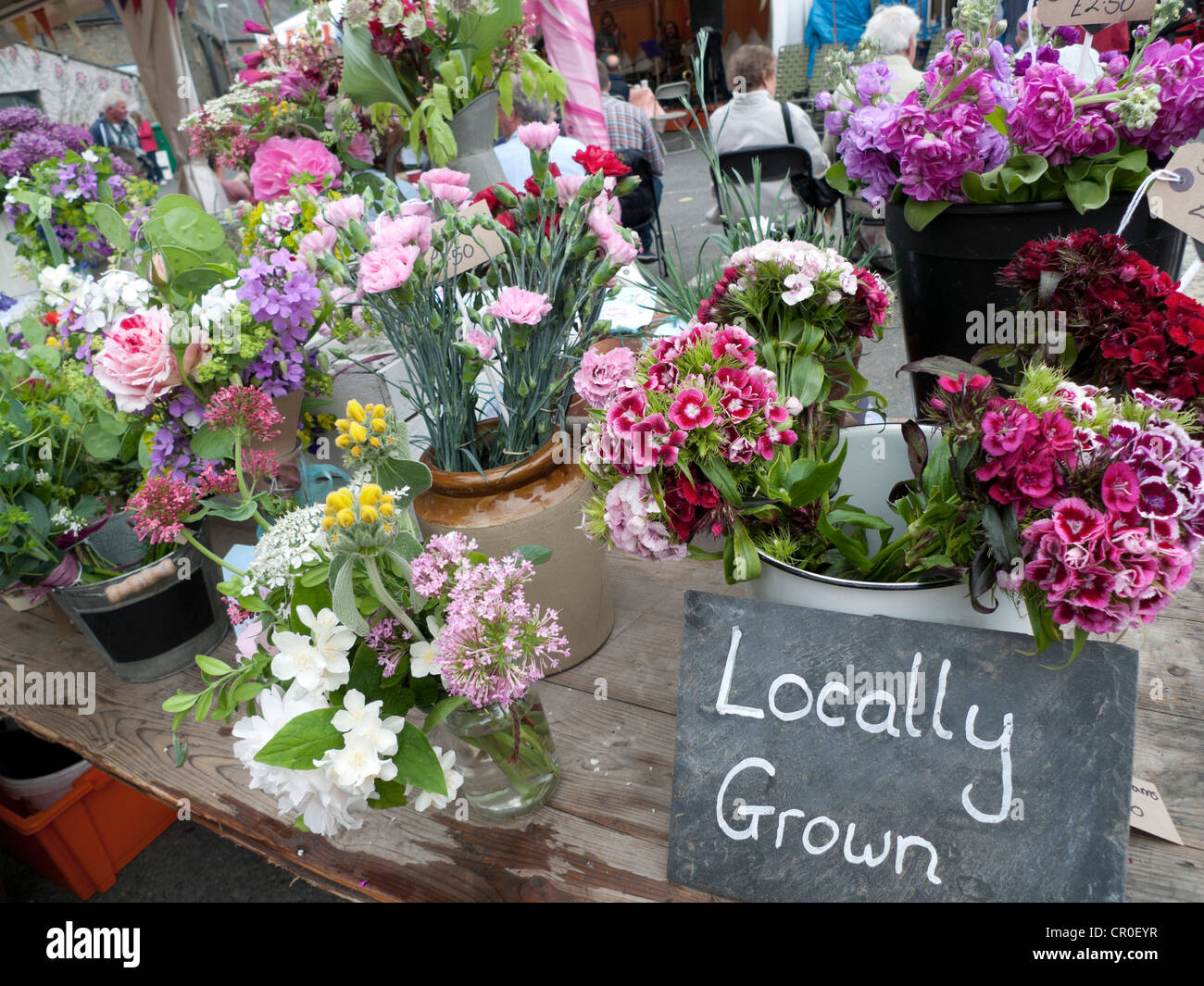 Locally grown sign at local cut flower street market stall Hay-on-Wye town during the annual Hay Festival of Literature - Stock Image