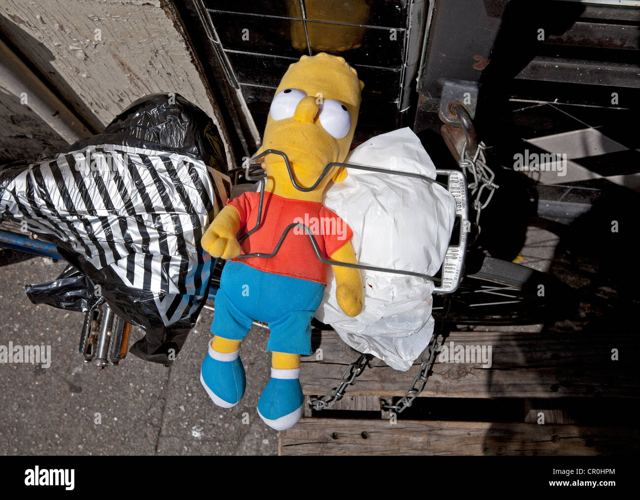 A bicycle owner straps Bart Simpson to the carrier in New York City. - Stock Image