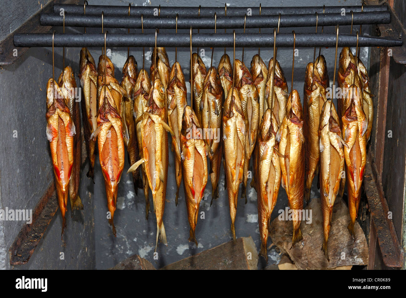 How to smoke fish in smokehouse What can smoke fish 2