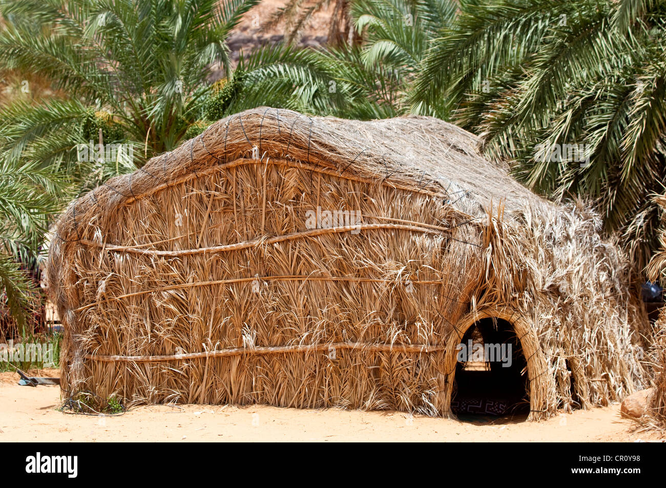 Mauritania, Adrar Region, Mhaireth, nomadic hut, made of palms in the oasis of Mhaireth - Stock Image