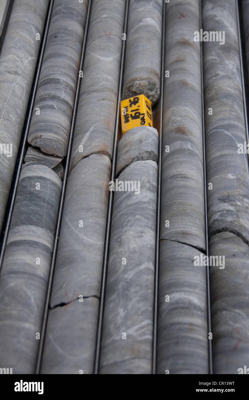 Diamond drill core lined up during exploration drilling campaign - Stock Image