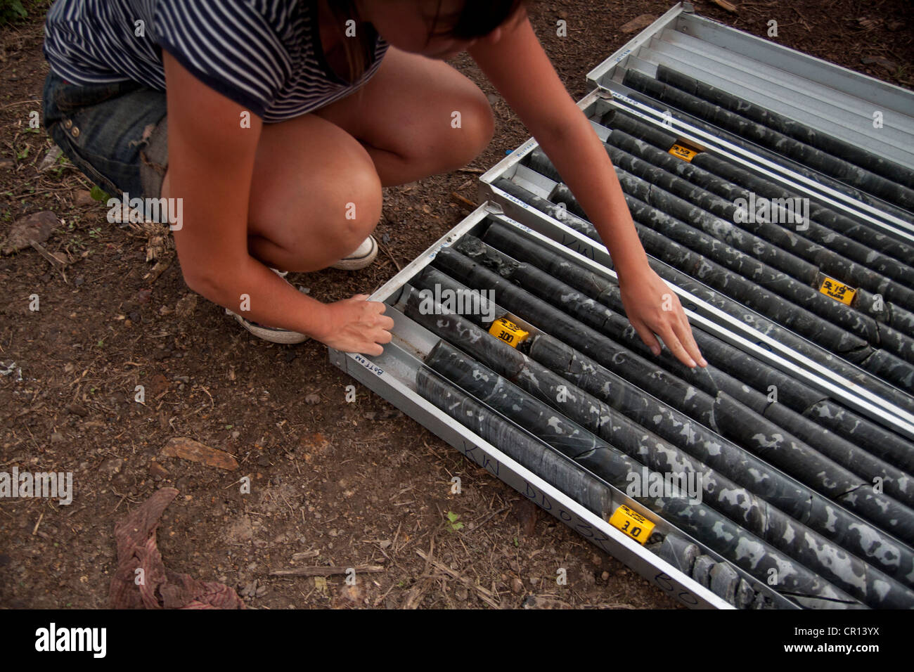 Female Geologist looking over drill core samples used in mining exploration - Stock Image