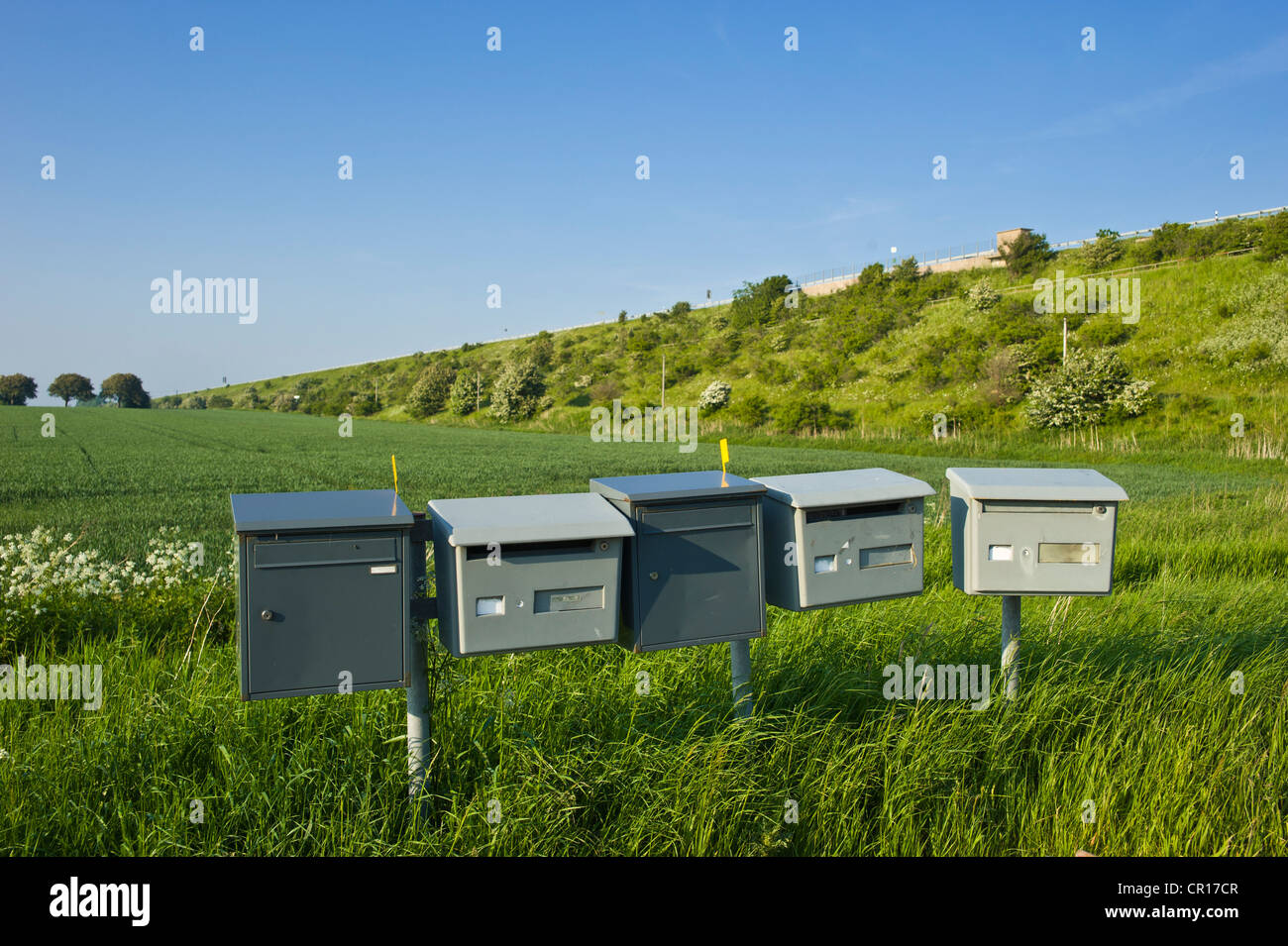 Letter boxes in the middle of a field, Strukkamphuk, Fehmarn island, Baltic Sea, Schleswig-Holstein, Germany, Europe - Stock Image