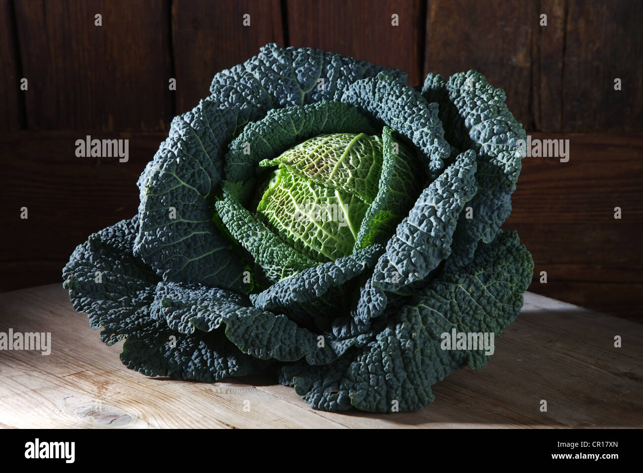 Savoy cabbage (Brassica oleracea convar. Capitata var. sabauda L.), on a rustic wooden surface Stock Photo