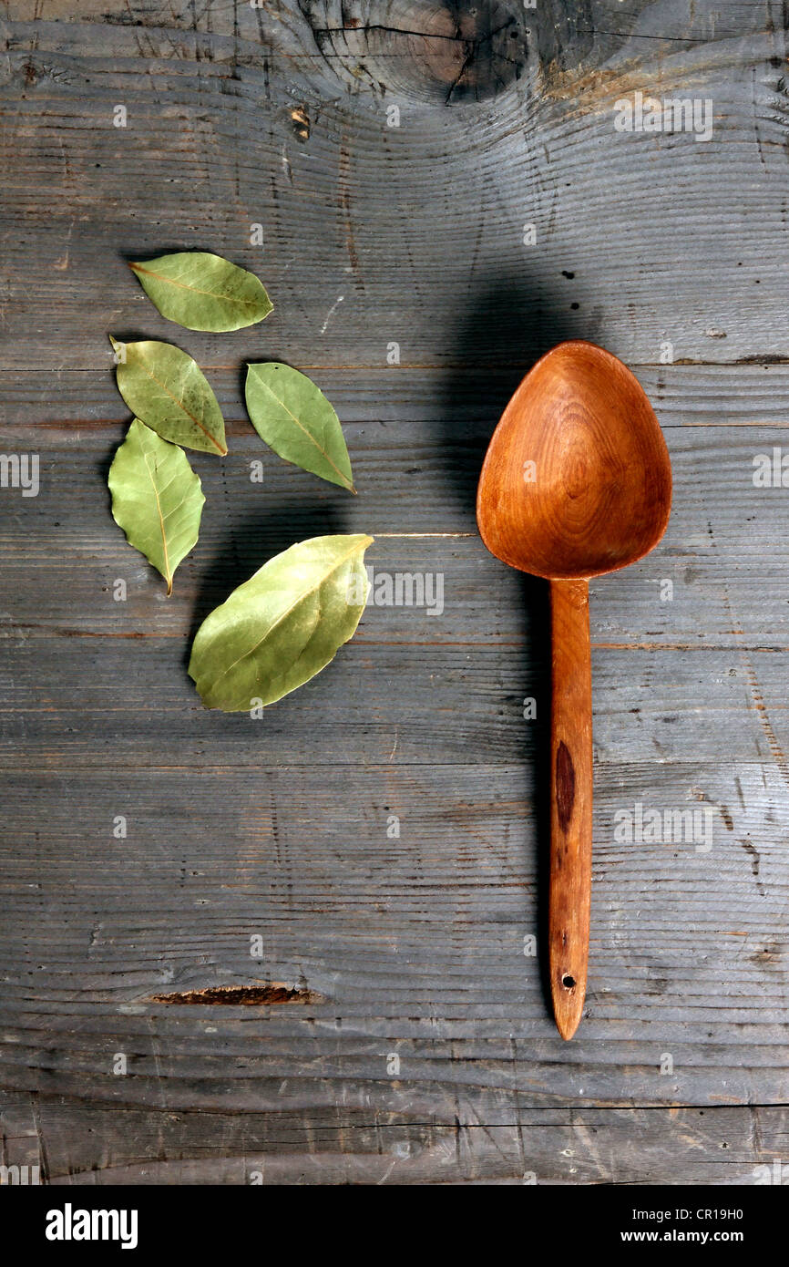 Bay Leaves (Laurus nobilis) with a wooden spoon on a rustic wooden surface - Stock Image