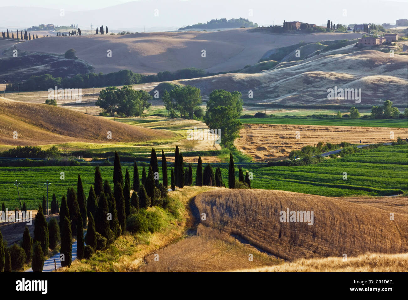 Typical Tuscan landscape near Taverne d'Arbia, Tuscany, Italy, Europe Stock Photo