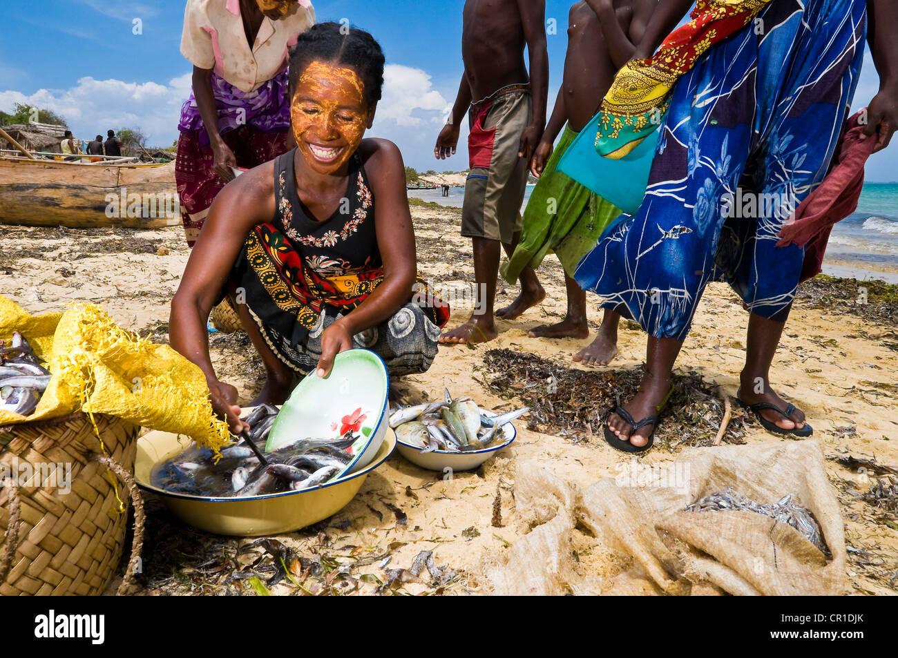 Madagascar former Province of Toliara South West Coast Ambolomailaka Vezo traditional village after back from fishing - Stock Image