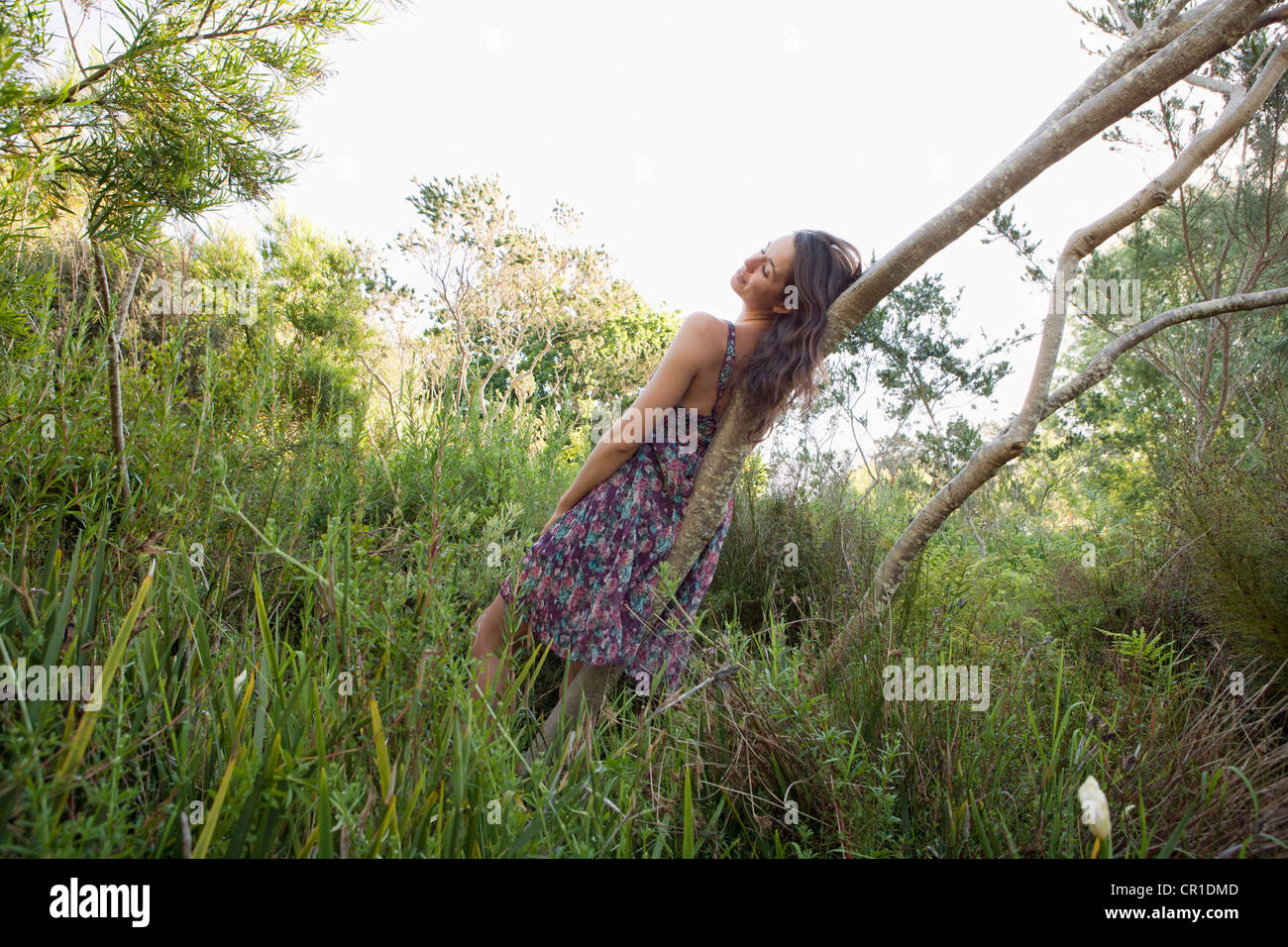 Teenage girl resting on curved tree - Stock Image