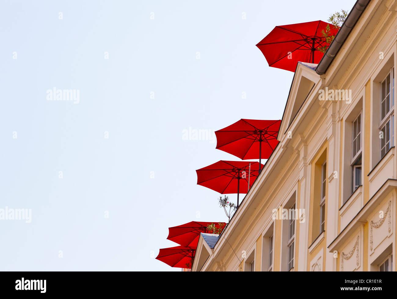 Red umbrellas on a roof terrace, Potsdam, Brandenburg, Germany, Europe Stock Photo
