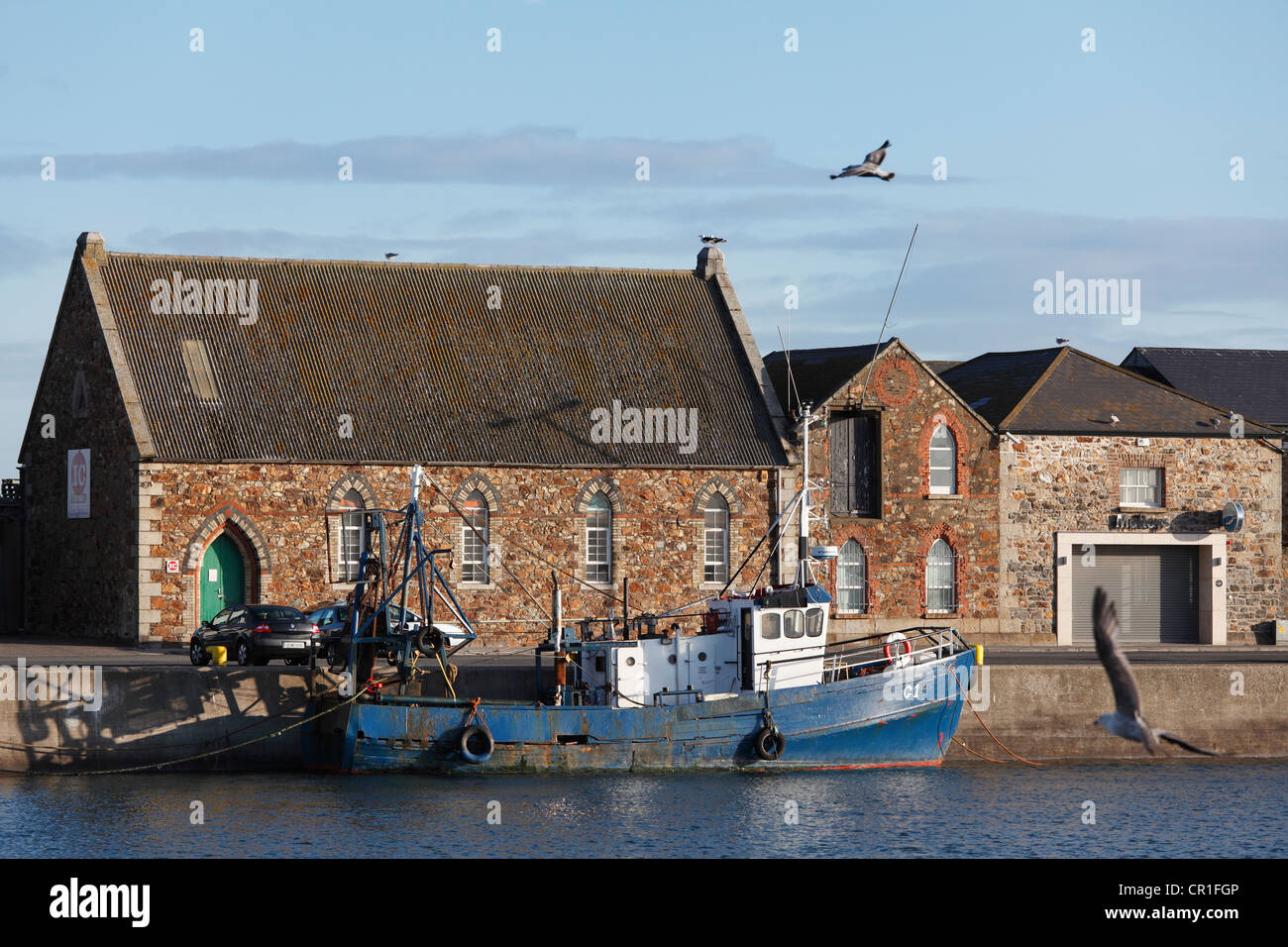 Fishing port of Howth, near Dublin, County Fingal, Leinster, Ireland, Europe, PublicGround - Stock Image