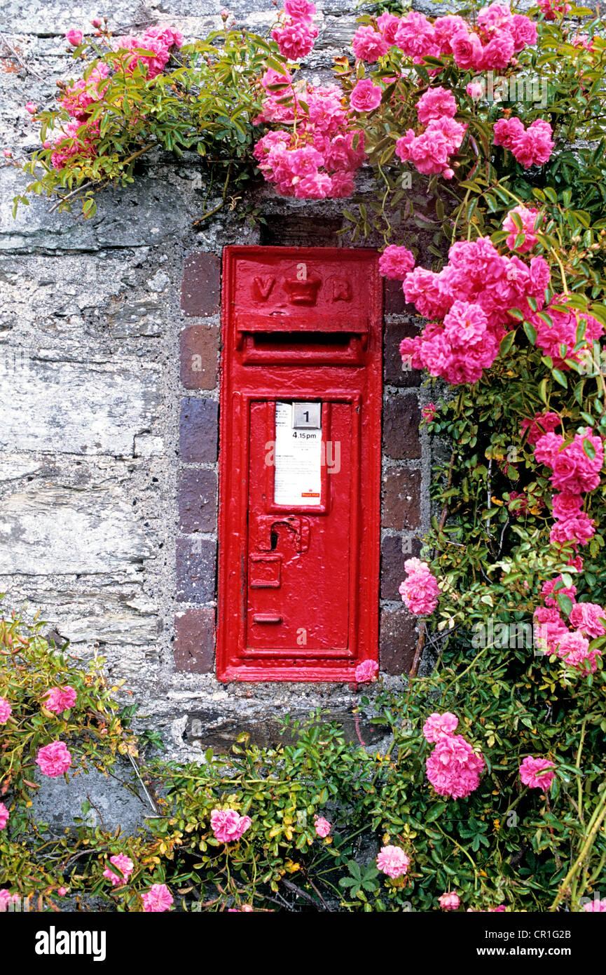 United Kingdom, Cornwall, Portloe, mailbox - Stock Image