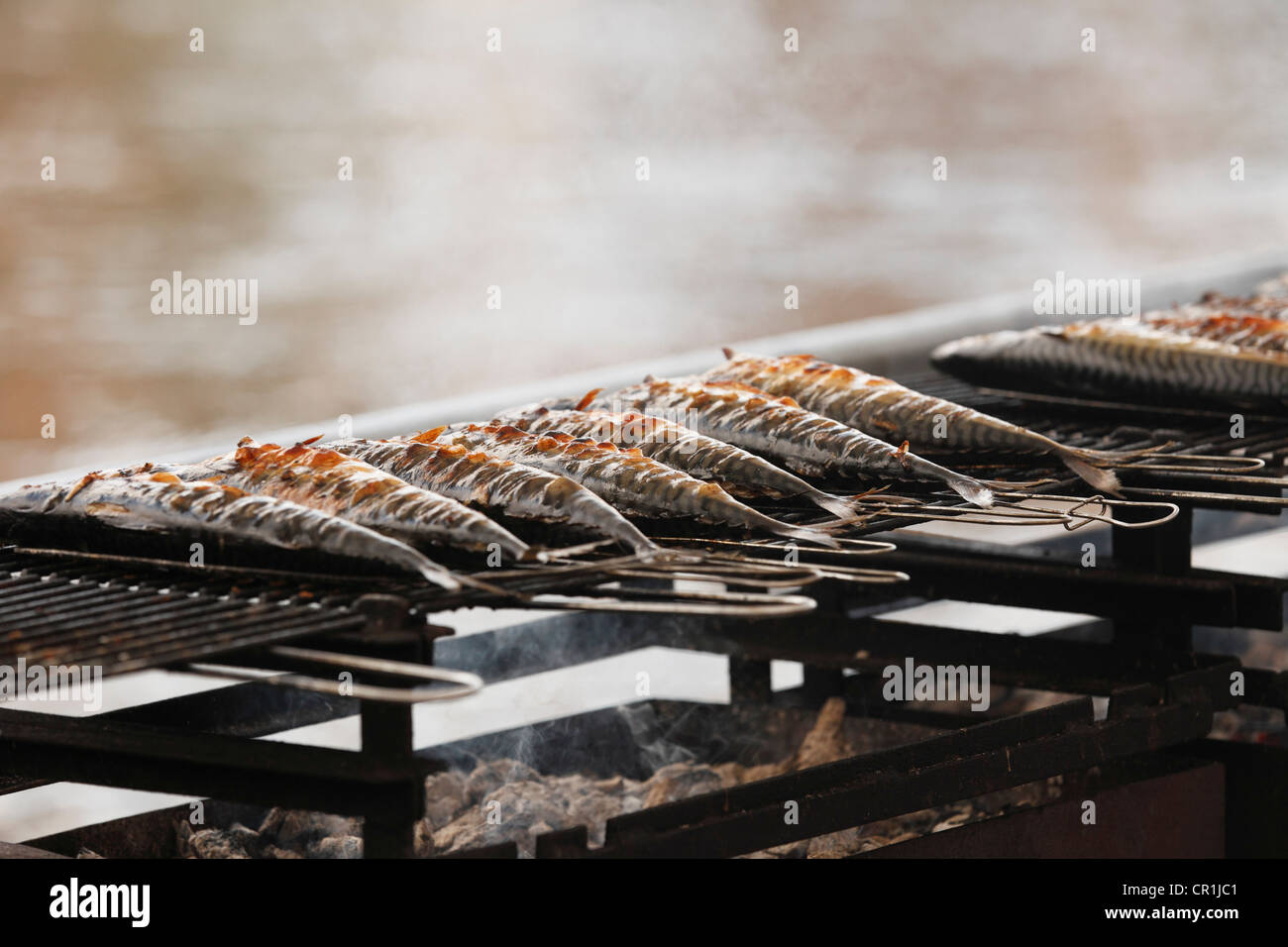 Fish on a grill, Sandkerwa, folk festival, Bamberg, Upper Franconia, Franconia, Bavaria, Germany, Europe, PublicGround - Stock Image