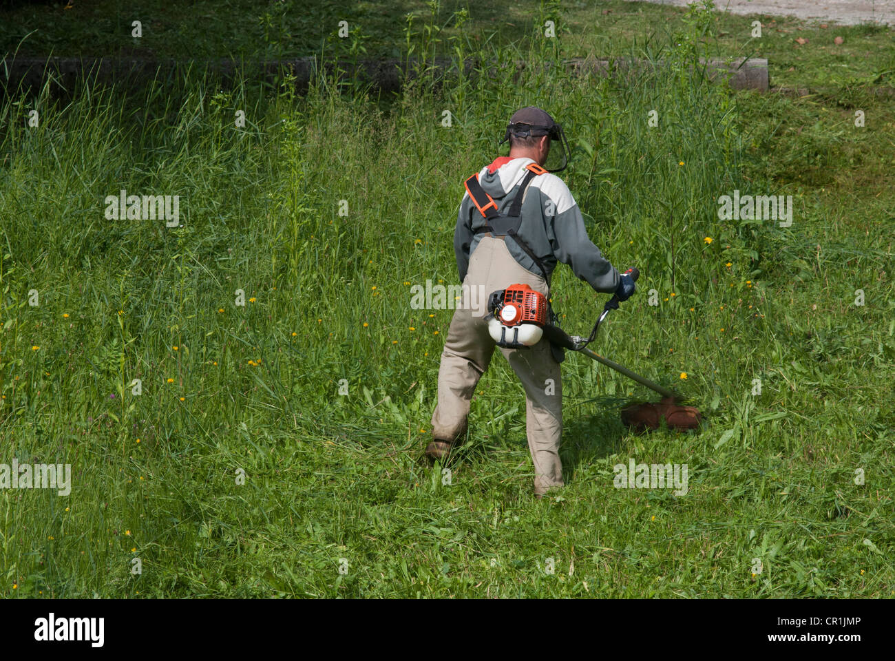 Manual Lawn Mower Stock Photos Images Alamy Engine Diagram An Employee Cut The Image