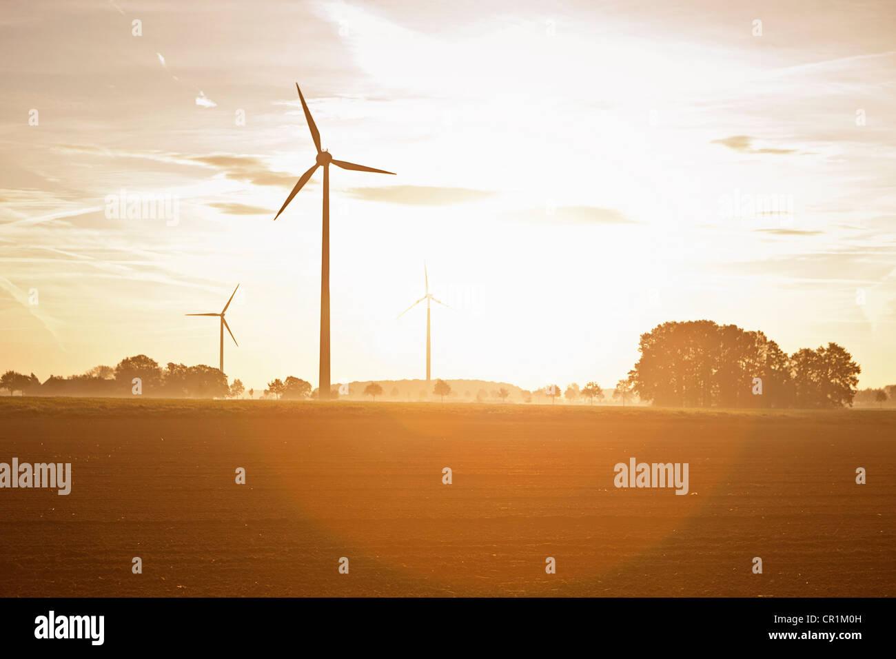 Wind turbines in rural landscape - Stock Image