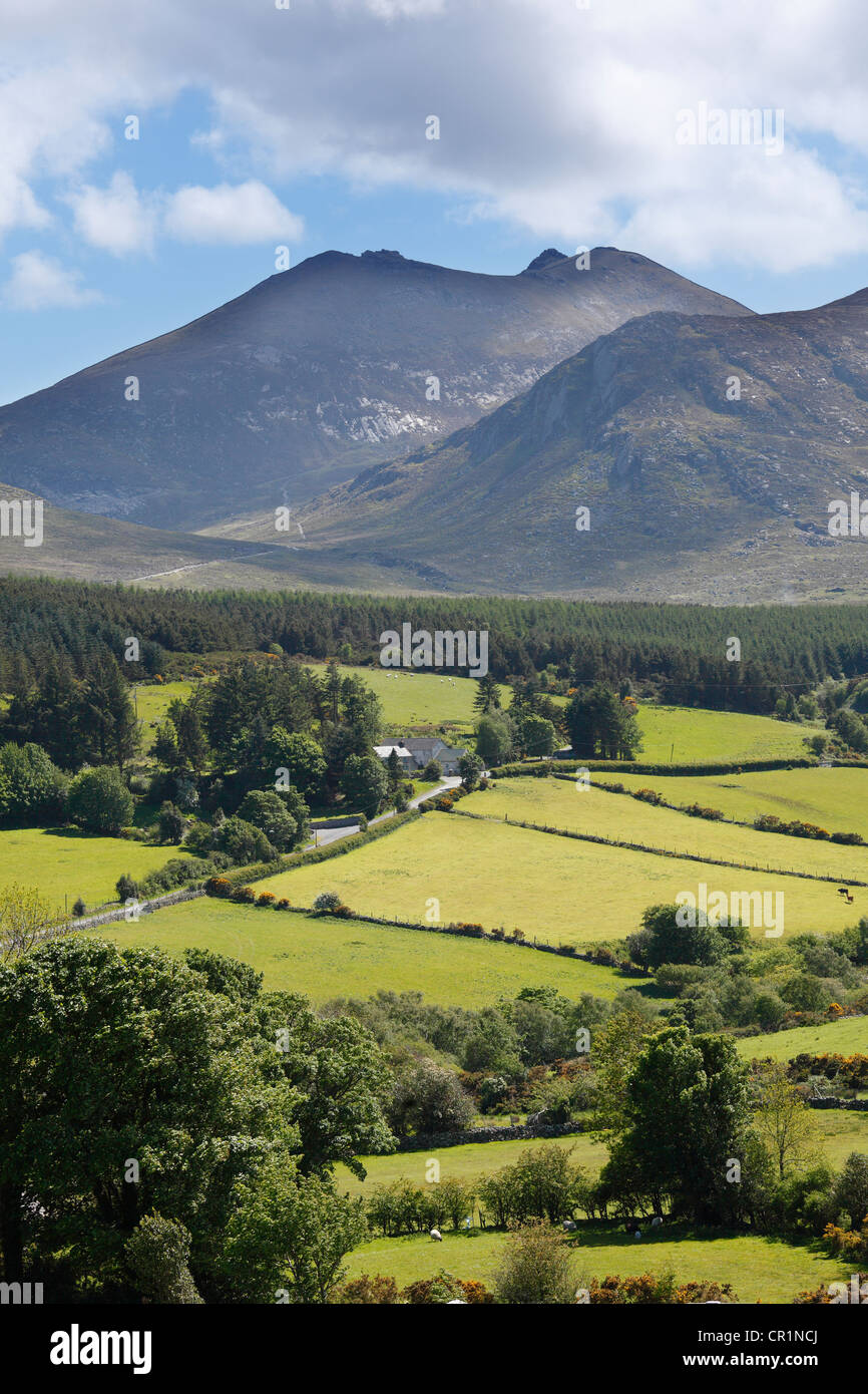 Mt. Slieve Bearnagh, Mourne Mountains, County Down, Northern Ireland, Ireland, Great Britain, Europe - Stock Image