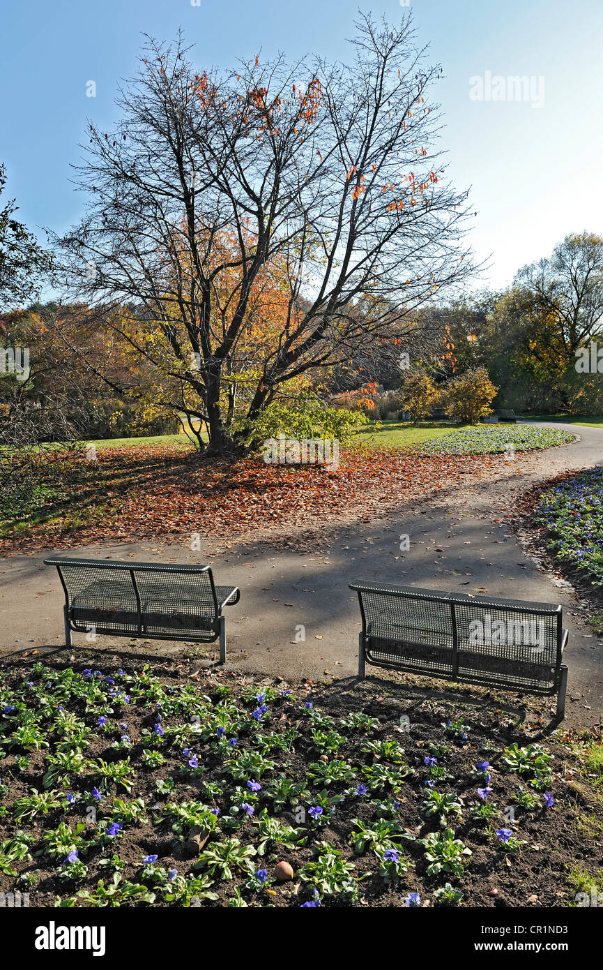 Park benches in the autumnal Ostpark, Munich, Bavaria, Germany, Europe - Stock Image