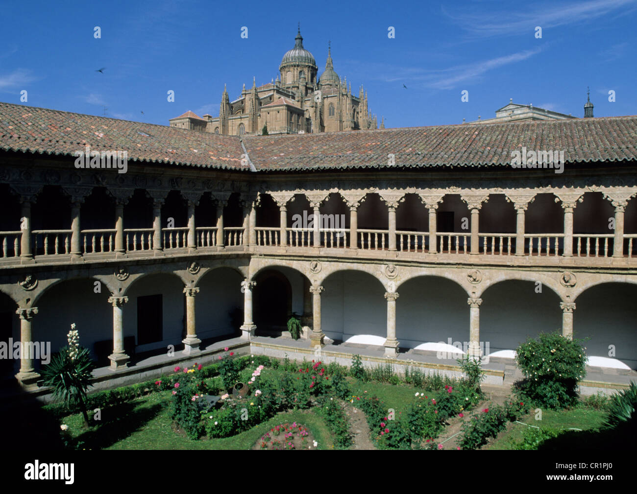 Spain, Castile-Leon, Salamanca, old city UNESCO World Heritage, Las Duenas Convent, its cloister - Stock Image