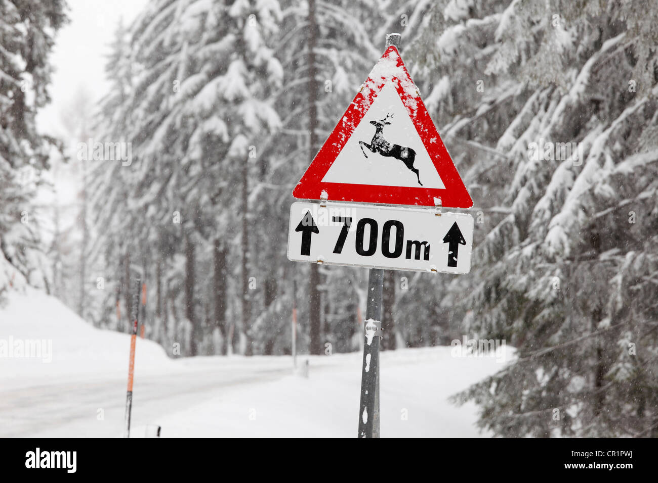 Road sign, Caution deer crossing, Oetscher-Tormaeuer Nature Park, Mostviertel, Must Quarter, Lower Austria, Austria, - Stock Image
