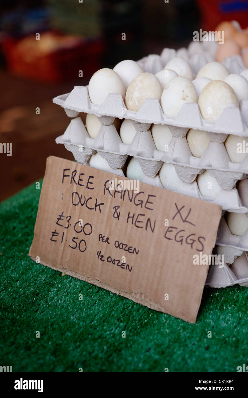 Free range eggs for sale - Stock Image
