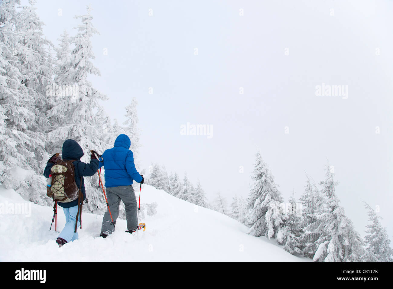 Father and son snowshoeing on hillside Stock Photo
