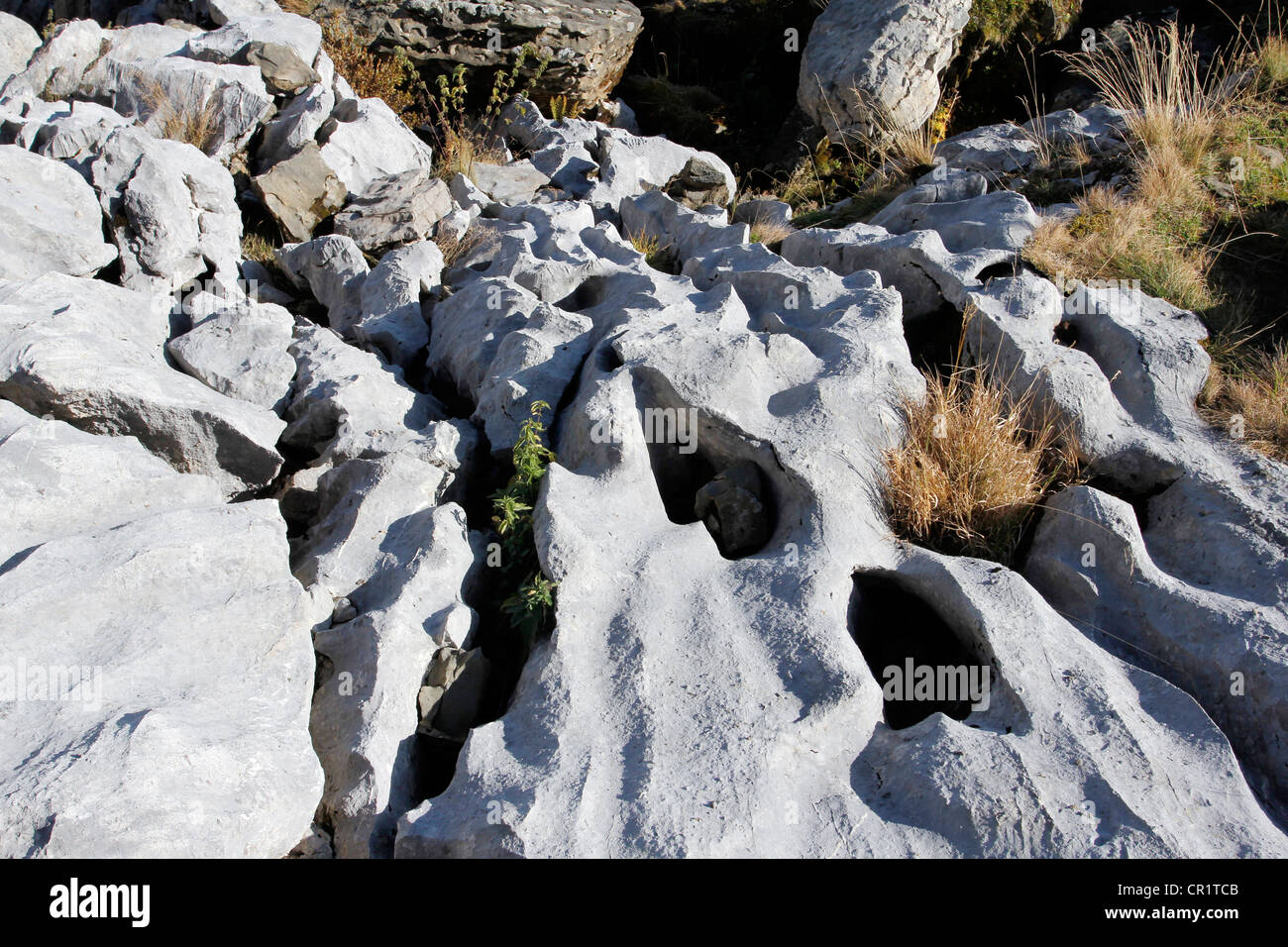 Karst landforms and gullies, geology of the limestone, geological trail on Gamser Rugg Mountain, Toggenburg - Stock Image