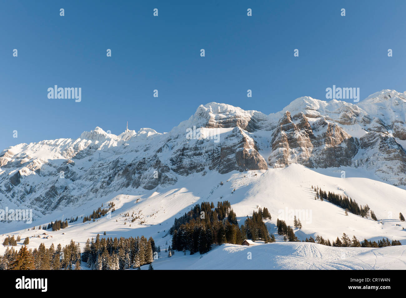 Saentis Massif In The Winter With Mt Saentis 2500m