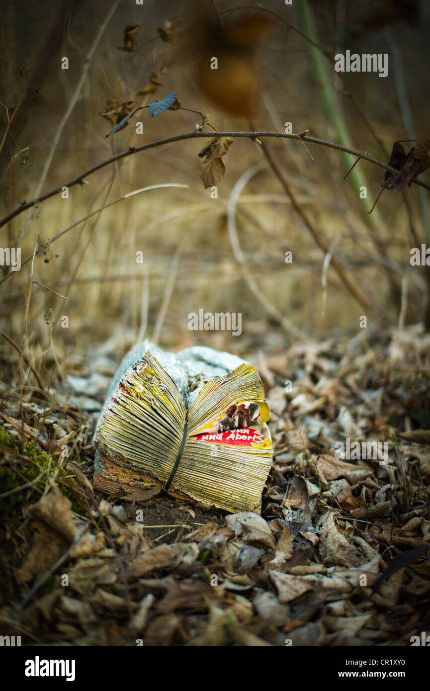Advertizing papers dumped in a forest Karlsruhe Germany - Stock Image