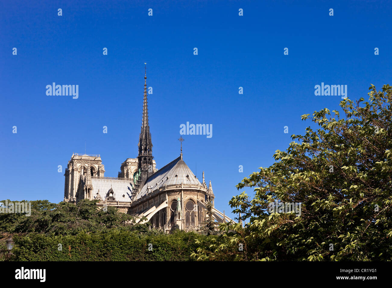 France, Paris, ile de la Cite, Notre-Dame de Paris cathedral - Stock Image