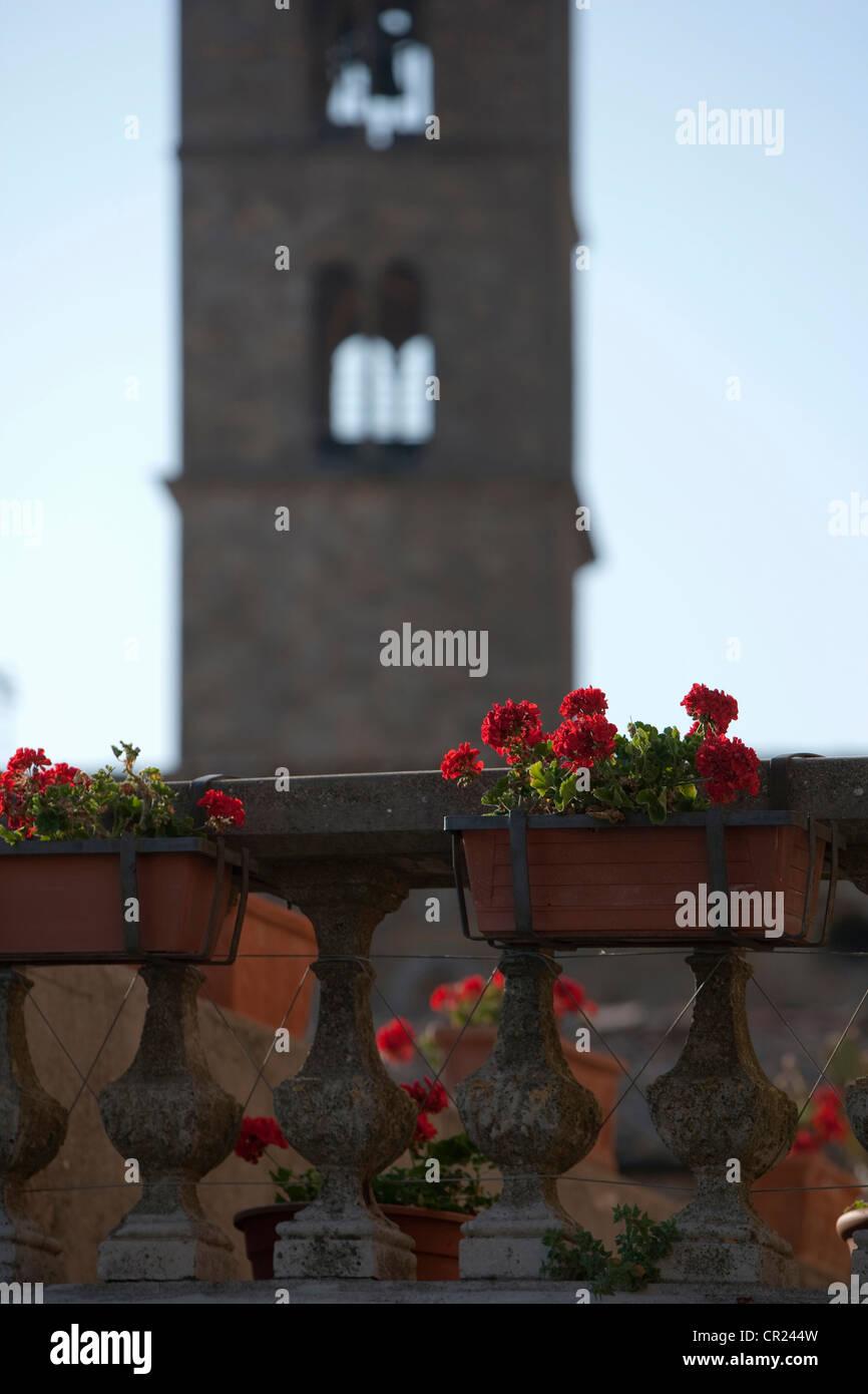 Flower boxes on ornate railing - Stock Image