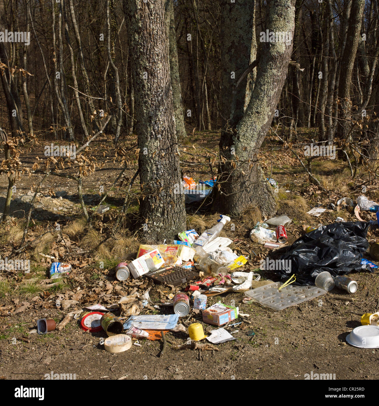 Illegally dumped waste - fly-tipping / fly tipping - in a forest. - Stock Image