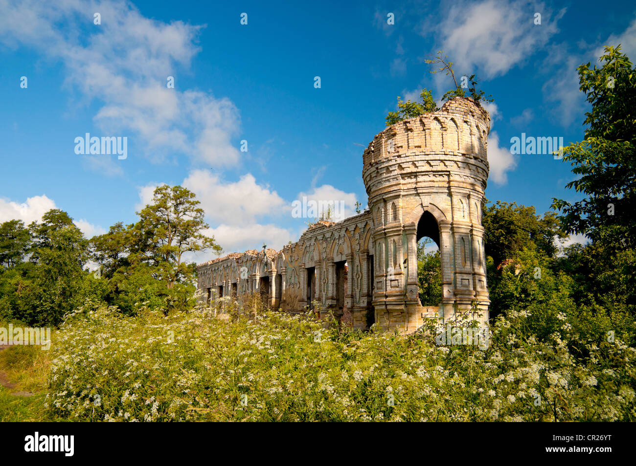 The ruins of the castle is located between Kyiv and Chernobyl, Ukraine Stock Photo
