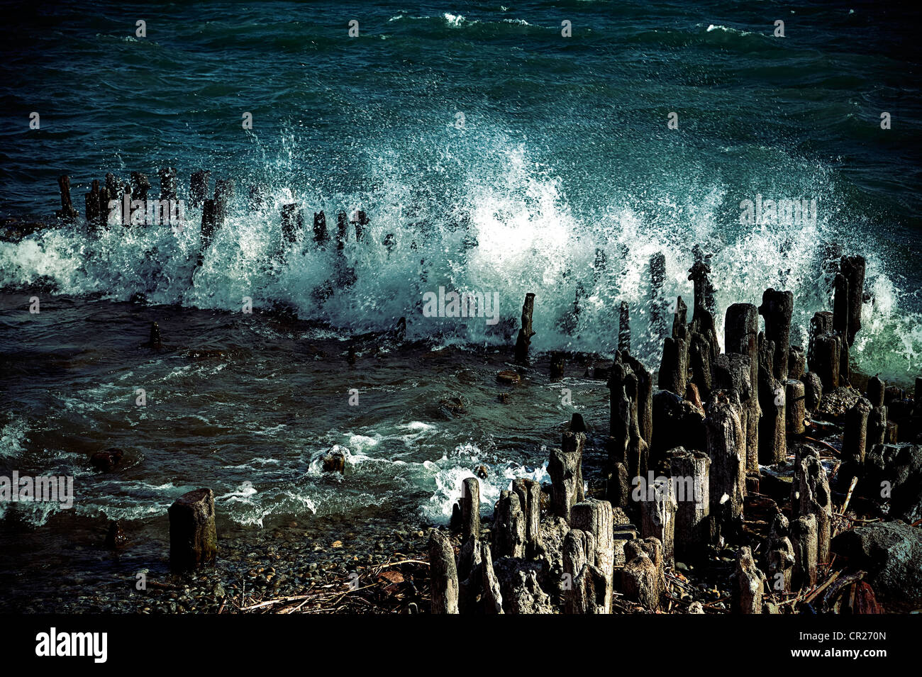 Waves breaking over wood piles - Stock Image