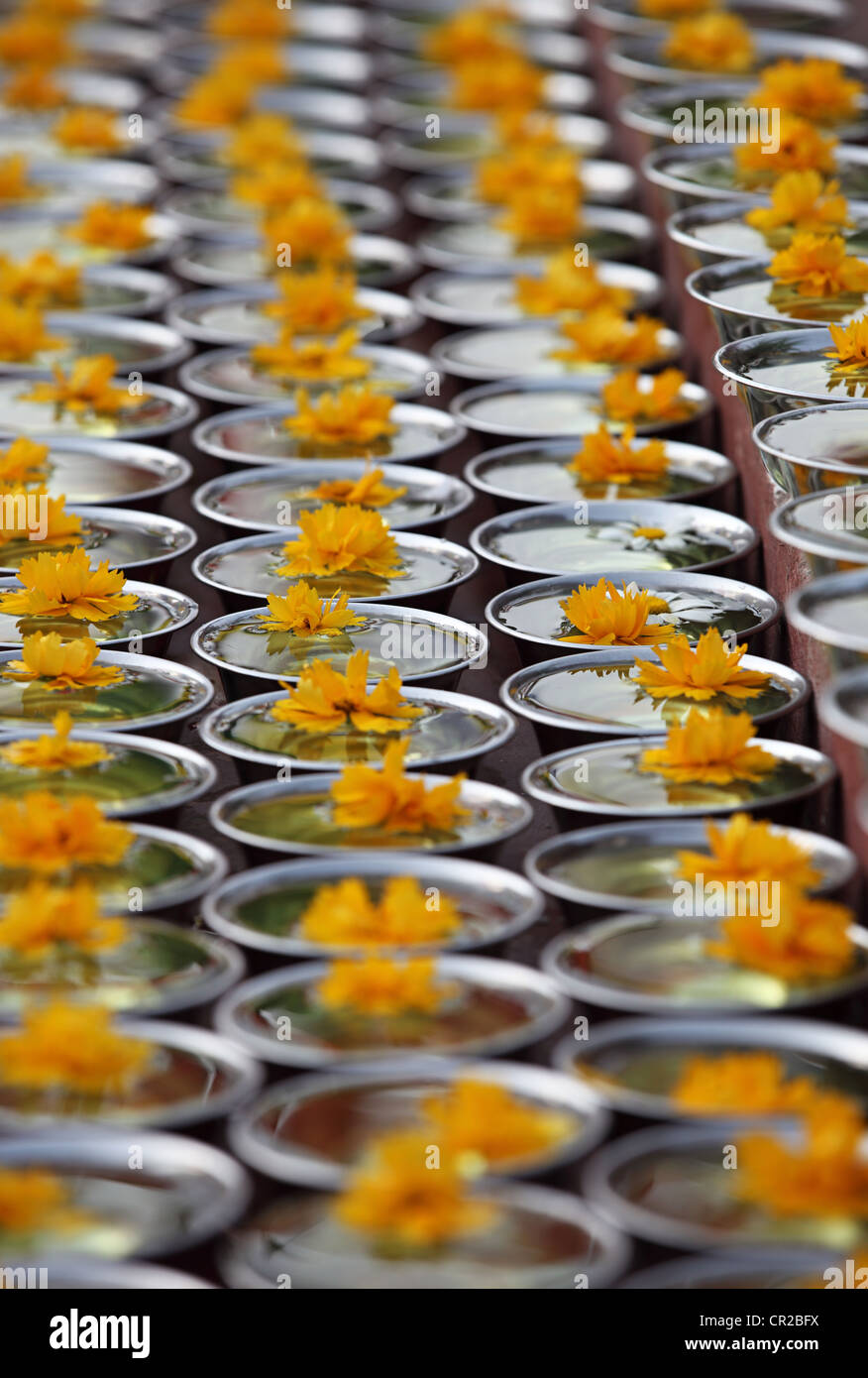 Buddhist water bowls used for rituals Bodhanath Nepal - Stock Image