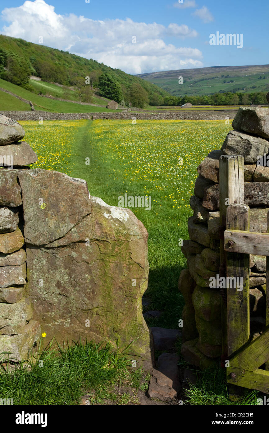 Farm gate & meadows; The Bottoms in the North Yorkshire Dales Meadows, near Gunnerside, National Park, Richmondshire, Stock Photo